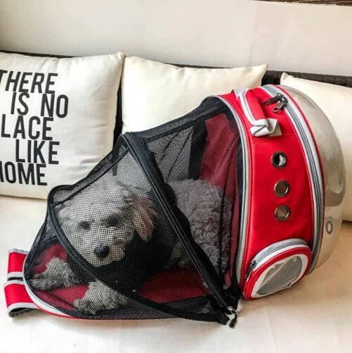 Сумки та рюкзаки для тварин