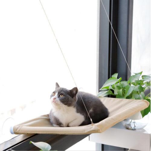 Лежаки і гамаки для котів