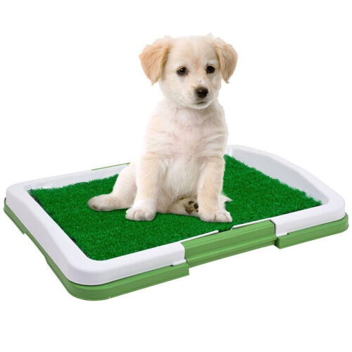 Lapa.shop: Туалети для собак