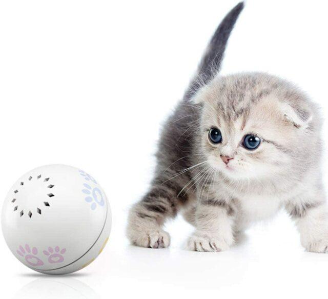 м'ячик для кошеня