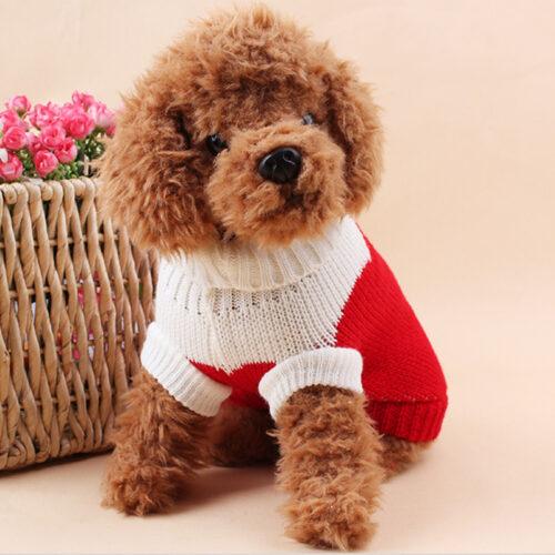 Lapa.shop: Одяг для собак
